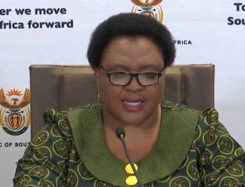 Minister Thoko Didiza announces interventions in the agricultural sector (video)